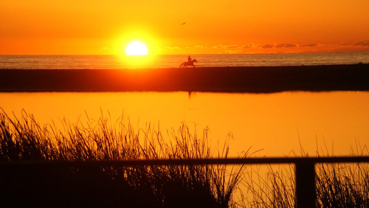 Concón: Con variados panoramas se disfrutan las vacaciones de ...